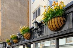 Kwiatów garnki wiesza na ścianie Obraz Stock