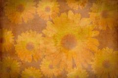 kwiatów grunge papieru rocznik Zdjęcie Royalty Free