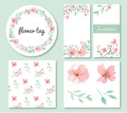 Kwiatów i liści projekta set ilustracji