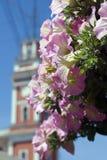Kwiatów i Nevsky perspektywy sylwetka Obrazy Stock