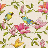 Kwiatów i ptaków tło Obrazy Royalty Free