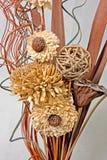 kwiatów kształty Obraz Royalty Free