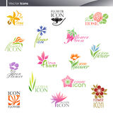 kwiatów loga ustalony szablonu wektor
