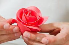 kwiatów marcepany Obrazy Royalty Free