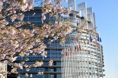 Kwiatów ogródy wokoło parlamentu europejskiego w Strasburg Obrazy Royalty Free