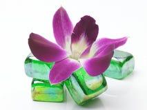 kwiatów otoczaki Obraz Stock