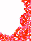 kwiatów płatki wzrastali Obraz Royalty Free