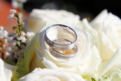 kwiatów pierścionków target1773_1_ obraz royalty free