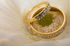 kwiatów pierścionki poślubia biel obrazy royalty free