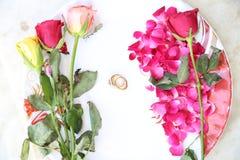 kwiatów pierścionków target2_1_ Fotografia Stock
