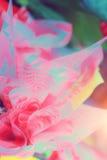 Kwiatów przygotowań wiosny róż świętowania bukieta pastel Zdjęcia Royalty Free