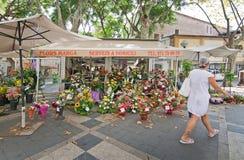 Kwiatów stojaki na losie angeles Rambla Obraz Royalty Free