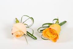 kwiatów target1130_1_ Fotografia Stock