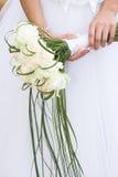 kwiatów target1234_1_ Obraz Stock