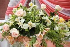 kwiatów target1694_1_ Zdjęcia Stock