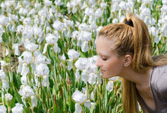 kwiatów target2910_0_ Zdjęcia Stock