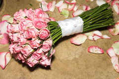 kwiatów target674_1_ Obraz Royalty Free