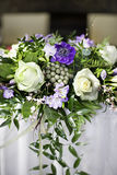 kwiatów target793_1_ zdjęcia stock