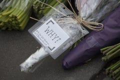 Kwiatów uznania opuszczają na bruku na krawędzi polici Obraz Stock