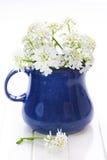 kwiatów wiosna waza Zdjęcia Royalty Free