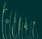 kwiatów zieleni wektor Zdjęcia Stock