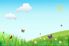 Kwiat łąka Z motylami Obrazy Royalty Free