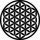 Kwiat życia Wektorowy czarny kontur i royalty ilustracja