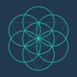 Kwiat życie Metatrons sześcian Święty Geometryczny royalty ilustracja