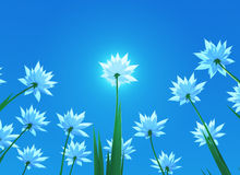 kwiat (1) wiosna Obrazy Royalty Free