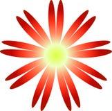 kwiat ilustracji