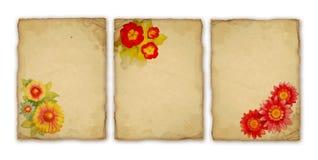 kwiat akwarela Obrazy Royalty Free