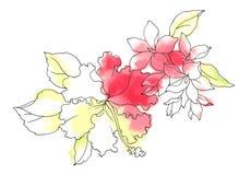 kwiat akwarela Zdjęcie Royalty Free