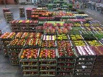 Kwiat aukcja Zdjęcie Royalty Free
