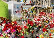 Kwiat barykad majdan Kijów Zdjęcia Royalty Free