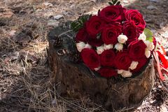 Kwiat, bukiet, valentine, piękno, tło bridal, piękny, panna młoda, świętowanie, pojęcie, para, kreatywnie, dzień zdjęcia royalty free