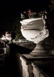 kwiat chenonceau spać zdjęcie royalty free