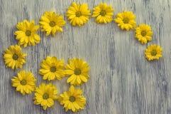 Kwiat chryzantema na drewnianej powierzchni verdure pozyskiwania środowisk gentile Zdjęcie Stock