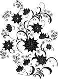 kwiat czarnego white Zdjęcia Royalty Free