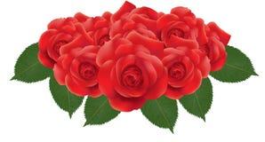 kwiat czerwień wzrastał Zdjęcia Royalty Free