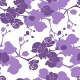 Kwiat dekoraci storczykowego projekta tekstury bezszwowy wzór Obrazy Royalty Free
