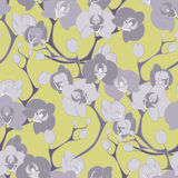 Kwiat dekoraci storczykowego projekta tekstury bezszwowy wzór Obrazy Stock