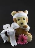 kwiat dostają prezent Zdjęcia Stock