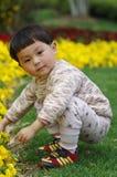kwiat dziewczyna zdjęcia stock