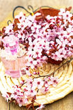 kwiat esencja Obrazy Royalty Free