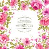 Kwiat etykietka na rocznik karcie Fotografia Royalty Free