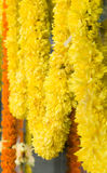 kwiat girlandy Zdjęcie Stock