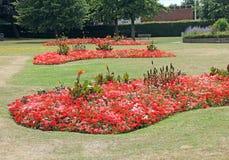 Kwiat granicy i łóżka Obrazy Royalty Free