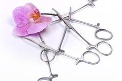 Kwiat i chirurgicznie narzędzia obraz royalty free
