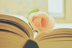 KWIAT I książka zdjęcie royalty free