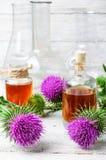 Kwiat i łopianowy ekstrakt Fotografia Royalty Free